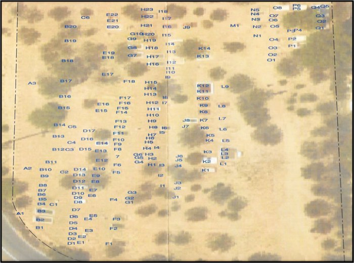 cemeterymap721x577